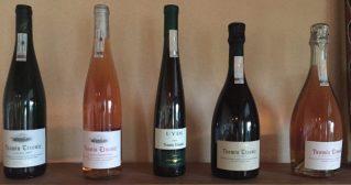 5 wine bottles